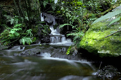 Dark waters (edwinemmerick) Tags: longexposure 20d water creek canon eos waterfall moss rocks stream australia bluemountains nsw slowshutter edwin damcliffs emmerick edwinemmerick