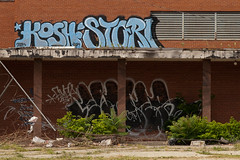 kosh stori (ExcuseMySarcasm) Tags: streetart graffiti unitedstates michigan detroit kosher elmer stori guerrillaart excusemysarcasm