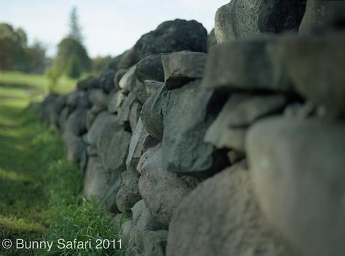 Rocks in Focus by claygrl