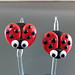 Earring pair : Ladybug
