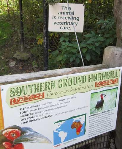 10.22.11 Franklin Park Zoo - Bummer sign