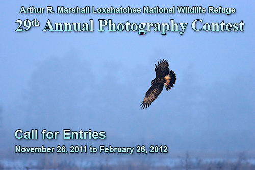 ARMLNWR 2012 Photography Contest