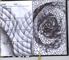 0018 (bjw-draw) Tags: blue black line draw artjournal ballpointpen foundbook zentangle