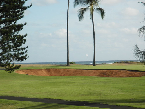 Turtle Bay Colf Course 067