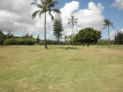 Turtle Bay Colf Course 160