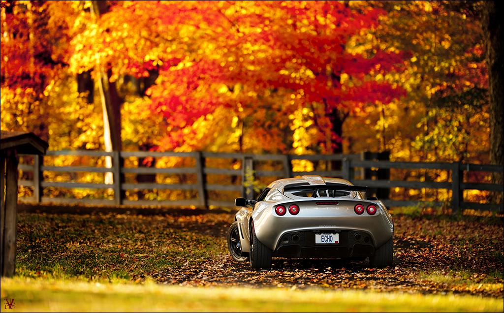IMAGE: http://farm7.static.flickr.com/6111/6303532186_dc0620dc9e_b.jpg