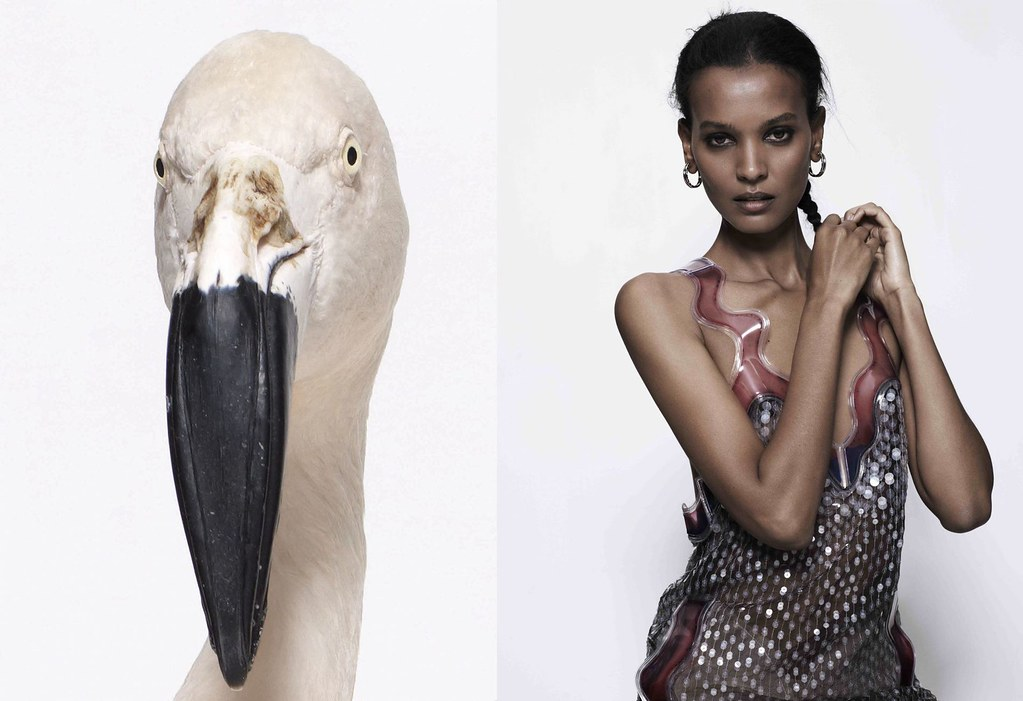 Liya Kebede by Sean & Seng (A New World - Pop Fall 2011) 1