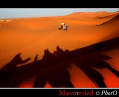 Ombre nel deserto (marcorenieri) Tags: panorama colore dune ombre carla marocco marco rosso luce deserto sabbia cammelli bestcapturesaoi