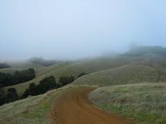 Clouds on the Rolling HIlls of Long Ridge (JIMWICh) Tags: california fog skyline clouds hiking paloalto santacruzmountains ridgeline rollinghills fireroad jimwich longridge midpeninsulaopenspace