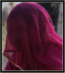 Veiled Beauty, Pushkar (me suprakash) Tags: face lady pushkar rajasthan pushkarcamelfair pushkarcattlefair veiledbeauty