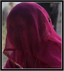Veiled Beauty, Pushkar (me suprakash) Tags: face lady pushkar rajasthan pushkarcamelfair pushkarcattlefair veiledbeauty