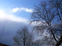 lightening (dmixo6) Tags: trees winter sky snow canada muskoka dugg dmixo6