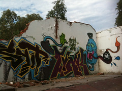 Snot, Zynk, Wish (Snot420) Tags: africa southafrica graffiti wish snot boksburg zynk