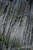 Snaefellsnes shs_n3_081481 (Stefnisson) Tags: sea summer landscape iceland cliffs og ísland sjór snæfellsnes strönd hafið stuðlaberg fjara klettar hnappadalssýsla stefnisson