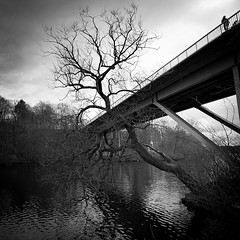 Wide Angle Viewer.. (Peter Levi) Tags: street city bridge sea blackandwhite bw woman dog tree blancoynegro water canal sweden stockholm streetphotography tiny blackwhitephotos bestcapturesaoi elitegalleryaoi dblringexcellence