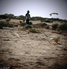 (Aljazi Al-Akoor) Tags: canon d550 aljazi abdelmohsen