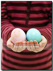 Holding Eggs (Lisa-S) Tags: portrait ontario canada easter hands lisas eggs shawna brampton invited midsection 2881 bodyonly flickropen getty2012 copyright2012lisastokes getty20120403