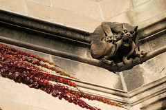 Fear and loathing (quinn.anya) Tags: stone blood tail ivy gargoyle chewing universityofchicago claws tendrils selfdestruction selfinjury