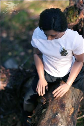 In the wildwoods II