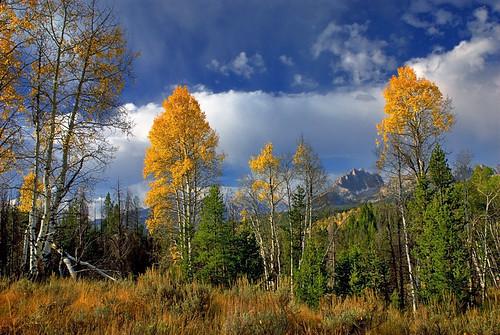 Mount Heyburn Autumn