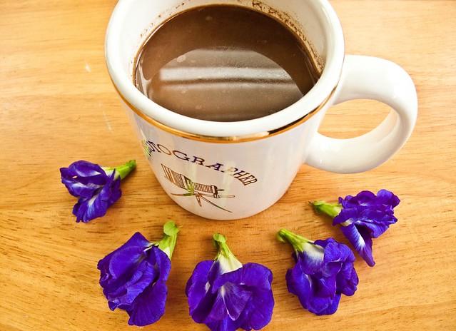 IMG_1632 Coffee and ,Blue pea flowers ( Clitoria ternatea, bunga telang )