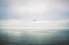 aeroplane over the sea (*JLo) Tags: ocean film colors watercolor airplane flight hue biplane aeroplaneoverthesea