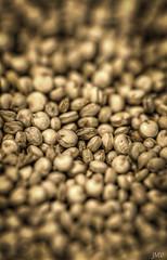 Superfood (jmvazquezjr (jmv_nyc)) Tags: macro peru photoshop nikon grain seeds quinoa andean topaz nutritious superfood 105mm d90 lightroom3