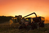 The End Results (JGo9) Tags: sunset tractor night rural cat canon landscape eos rebel corn farm kentucky ky country harvest clear combine farmer harvester ih eubank t1i