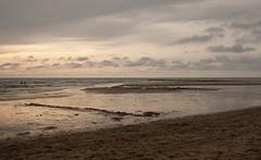 _MG_1589 (danieltreek) Tags: sun holiday holland beach nature water netherlands strand landscape see wasser sommer urlaub natur landschaft sonne nordsee niederlande northsee erholung