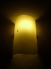 nchtlicher Besucher (judith74) Tags: lampe licht marienkfer mariechenkfer
