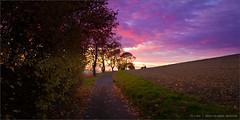 Sunset - Landscape - Sankt Wendeler Land (photography.andreas) Tags: sunset sky clouds germany landscape deutschland twilight explore bluehour saarland blauestunde explored lheurebleue sanktwendelerland sonnenaufundsonnenuntergang