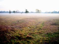 Morning fog (r_zamarripa) Tags: olympus zuiko ep2 17mm