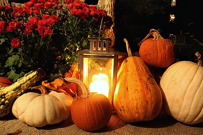 Autumn 2011 012