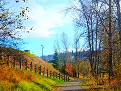Quesnel's Riverfront Trail (peggyhr) Tags: blue autumn trees friends red sky orange sunlight white canada black mountains green yellow clouds shadows bc branches grasses guardrail shrubs cariboo quesnel wow1 wow2 wow3 wow4 riverfronttrail amazingnature autumnfall thegalaxy peggyhr heartawards dazzlingshots raccontiamo naturestyle afeastformyeyes hillslopes 100commentgroup grrreatworks colourpriority zensationalworld mygearandme nossasvidasnossomundoourlifeourworld photohobbylevel1 blinkagainforinterestingimages thebestshots bestofblinkwinners redgroupno1 vivalavidalevel1 artselectedbyadministratorsonly yellowgroupno2 bluegroupno4 whitegroupno5 greengroupno3 blackgroupno6 gaveyachillsnewcontest p1070083ap feeadminworld