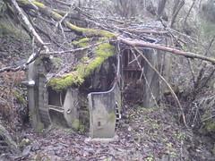 DSC04624 (731132) Tags: old car austin junk rust rusty bil rost rostig skrot gammal skrotbil a55 skogsvrak 731132