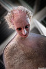 In silenzio ci osservano (Riccardo Mollo) Tags: creepy figure witness observer figura artissima spaventoso osservatore