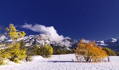 Puy Saint Vincent (@lain G) Tags: automne neige arbre feuilles hautesalpes levillaret puysaintvincent