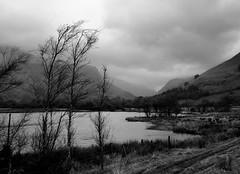 Cad Valley across Tal Y Llyn (Jez B) Tags: lake water rain wales clouds hill desolate cad idris talyllyn cadair corris machloop