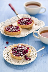 Cranberry tarts (The Little Squirrel) Tags: cranberry tarts