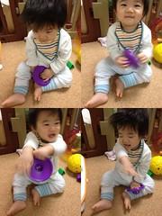 おはよう!今日の起きたてとらちゃん(2011/11/11)
