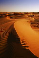 Desert  (Explore #171) (Saleh Mohammed) Tags: lighting sky canon dc sand desert silhouettes sigma earthy mohammed land mm 1020mm 1020 saleh  d600      hsm                alfuraiji