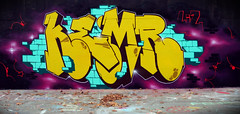 SAME SHIT DIFFRENT DAY (ALL CHROME) Tags: film canon naked graffiti google explorer explore graff flu dubstep cocaine kemer sleepless kem drank grapesoda eggplants muffs fedral pyramidscheme kem5 kems kemr