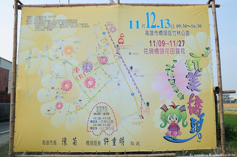 橋頭花海 (48)