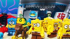 Day 318 (chrisofpie) Tags: chris pie monkey lego doug legos hero heroes minifig roger minifigure bluehat legohero chrisofpie rogeranddoug 365legos dougthechimp