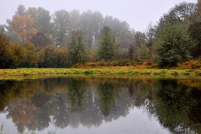 321/365 ~ Virginia Lake