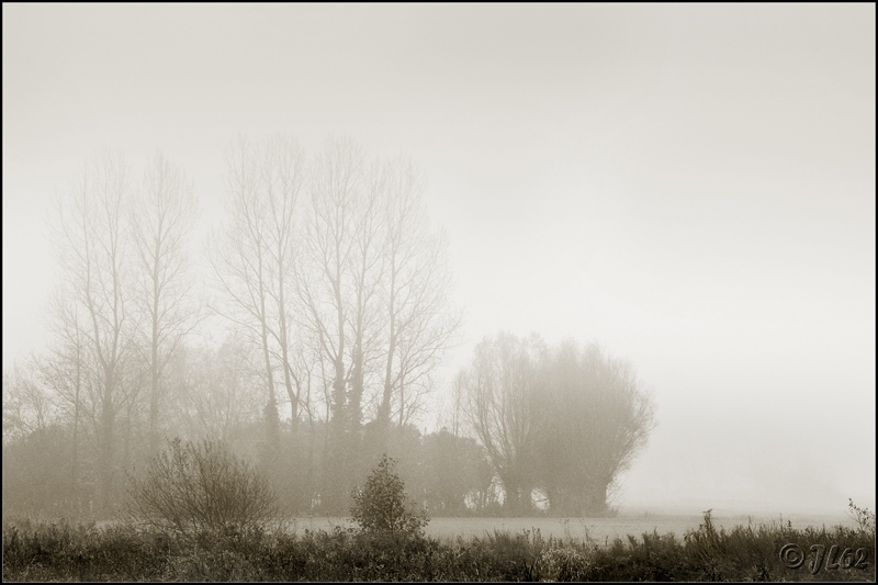 Brumes et brouillards 6352154595_0d5242a47e_o