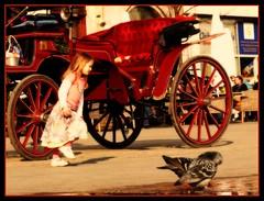 Pigeon chaser (MyszEK.) Tags: street people girl lumix carriage pigeon poland polska krakow panasonic krakw cracow rynek mainmarketsquare krakoff doroka dmcfz50 myszek ewakulon