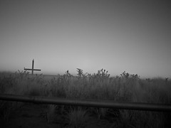 cross (nosha) Tags: new sea seascape bird beautiful beauty grass newjersey cross pray shore crucifix jersey lightroom 2011 nosha lumixg20f17 oceangrovenewjerseyusa olympusepl3