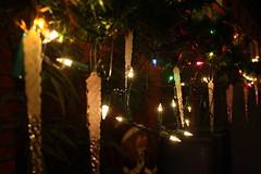IMG_7218 (xiangjiaocao) Tags: birthday december yakiniku japanesebbq greenteatiramisu