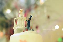 [324/365] Wedding Cake Toppers (Dodzki) Tags: november nikon pcc 2011 cebusugbo d5000